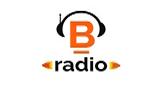 Benavides Radio