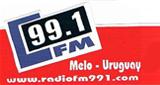 99.1 FM