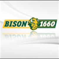 Bison 1660