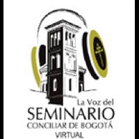 La voz del seminario virtual