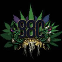 880 - Rock N Grow