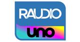 Raudio Uno