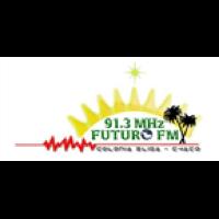 FUTURO FM 91.3 MHZ - LRH 790