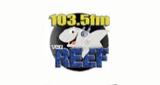The Reef - WAXJ