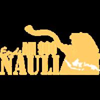Ende Nauli Radio