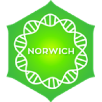 Positively Norwich