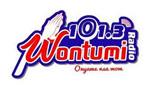 Wontumi Radio
