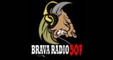 Brava Radio 507
