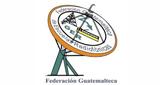 Cadena Radial FGER