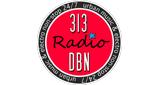 313 DBN Radio
