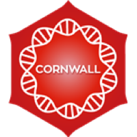Positively Cornwall
